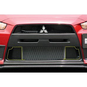 LOWER INNEN SUCTION PLATE EVO X